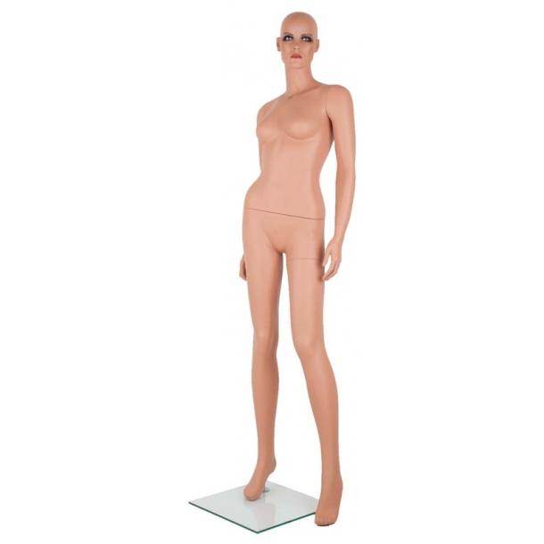 Ava mannequin