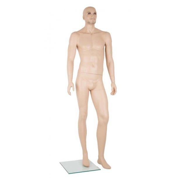 Noah mannequin