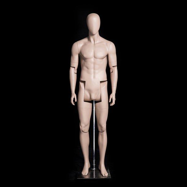 Parsifal (Natur) bevægelig mannequin naturalistisk ansigt